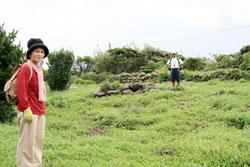 国指定史跡「見島ジーコンボ古墳群」