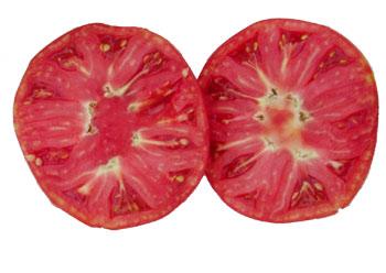 オランダトマト 輪切りにしてみた状態