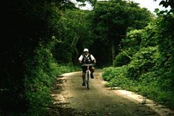 山口県おでかけ情報 山口県萩市見島 サイクリング